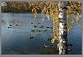 В Петропавловском парке осень.jpg