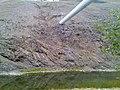 Газопровод над речкой Бретяк - panoramio.jpg