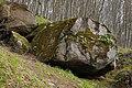 """Камінь на території геологічной пам'ятки природи """"Скеля Коцюбинського"""" P1350411.jpg"""