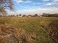 Окрестности поселка Красное Утро - panoramio (20).jpg