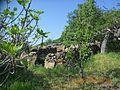 Остатоци од трло - panoramio.jpg