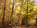 Осінній Чатир-Даг 03.jpg