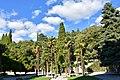 Пальмы вокруг фонтана на главной площади.jpg
