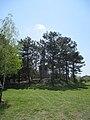 Пам'ятник радянським воїнам 51-ї армії,1.jpg