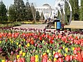 Парк им. А. Рудаки. г. Душанбе (3).jpg