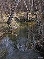 Река Ельцовка 07.jpg