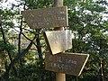 信貴山 - panoramio.jpg