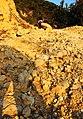 塌方大石20111224 - panoramio.jpg