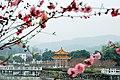 广州最美乡村—红山村 - panoramio (3).jpg