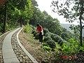 杭州.登十里郎当(龙井茶室...棋盘山...五云山...九溪 .) - panoramio (5).jpg