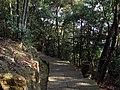涌泉寺后山步道 - Yongquan Temple Path - 2014.07 - panoramio (1).jpg