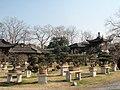 盆景博物馆景色 - panoramio - 江上清风1961 (5).jpg