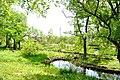 矢川緑地 - panoramio (36).jpg