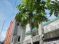 00266jfCatholic Women's League Santo Cristo Pulilan Quasi Parish Chuchfvf 25.jpg