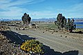 00 1671 South America - Altiplano de Bolivia.jpg