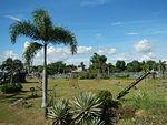 02397jfHour Great Rescue Concentration Camps Cabanatuan Park Memorialfvf 04.JPG