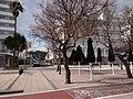 07560 Cala Millor, Balearic Islands, Spain - panoramio (5).jpg