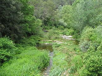 Ripoll (river) - The Ripoll in Les Arenes, Castellar del Vallès.