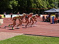 100mHW heat1 at TNT Fortuna Meeting in Kladno 15June2011 009.jpg
