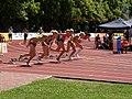 100mHW heat1 at TNT Fortuna Meeting in Kladno 15June2011 009.jpg