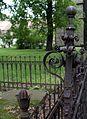 1081viki Cmentarz przy Kościele Pokoju. Foto Barbara Maliszewska.jpg