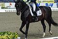 13-04-21-Horses-and-Dreams-Elena-Sidneva (8 von 21).jpg