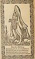 1601, Zacharias Heyns, Den Zee Bisschop, Dracht-Thoneel.jpg