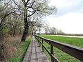 160416 - Trail in the Biebrza National Park - 02.jpg