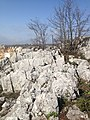 16110 Üçpınar-Nilüfer-Bursa, Turkey - panoramio (14).jpg