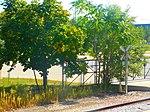 18th Street Station (22137184775).jpg