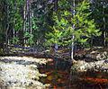 1935. Речка в еловом лесу.jpg