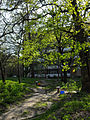 1 Likarnia Park Cherk-506.jpg