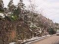 2010年12月15日夜里的那场雪 - panoramio (9).jpg