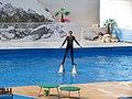 2012-09-09 Севастопольский дельфинарий (4).jpg