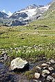 2013-08-05 07-38-46 Switzerland Kanton Graubünden Ospizio Bernina Bernina Hospiz.JPG