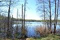 2015 27 Национальный парк Мещёрский - озеро Ютница.jpg