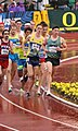 2016 US Olympic Track and Field Trials 2245 (28222743826).jpg