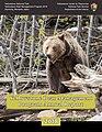 2018 Bear Report cover (48909055456).jpg