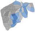 2020 台北市立委第五選區選舉各里得票人口變形圖.png