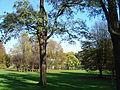 2286-00020 Parc de Woluwe (9).JPG