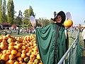 4. Bucharest, Romania. Pumpkin Fest. Primul Festival de Halloween din Romania. Oct. 2019. (Frumoasa vrajitoare isi face reclama).jpg