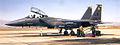 461st Fighter Squadron - McDonnell Douglas F-15E-43-MC Strike Eagle 87-0169.jpg