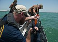 56.1 conducts UUV operations (Image 1 of 6) 160516-N-XY744-026.jpg