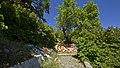 67020 Calascio AQ, Italy - panoramio - trolvag (4).jpg