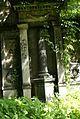 71viki Cmentarz żydowski na Ślężnej. Foto Barbara Maliszewska.jpg