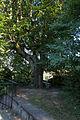 AT-122319 Gesamtanlage Augustinerchorherrenkloster 067.jpg
