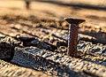 A Rusty Nail (29548679207).jpg