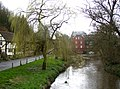 A branch of the River Wey at Eashing Bridge, Shackleford - geograph.org.uk - 163115.jpg