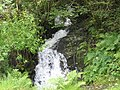 A fall on a tributary stream - geograph.org.uk - 490050.jpg