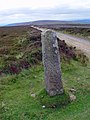 A standing stone above Farndale - geograph.org.uk - 893715.jpg